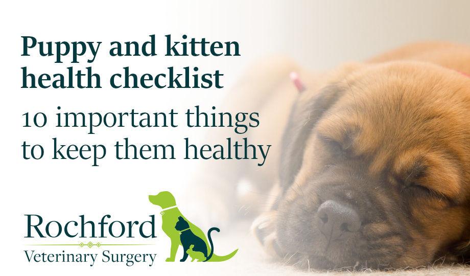 Puppy and Kitten health checklist
